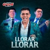 Llorar Llorar by Grupo 5