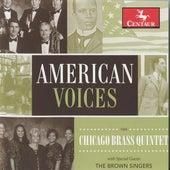 American Voices de Various Artists