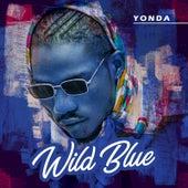 Wild Blue de Yonda