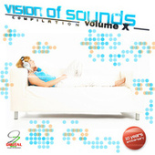 Vision of Sounds Vol. 10 by Various Artists