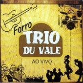 Ao Vivo von Trio Du Vale