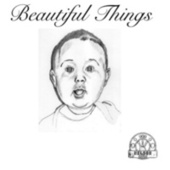 Beautiful Things (Single Version) by The Nelson Brothers