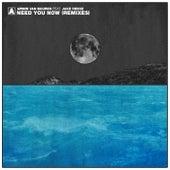 Need You Now (Remixes) von Armin Van Buuren