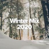 Winter Mix 2020 von Various Artists