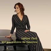 Will You Still Love Me Tomorrow by Sabien Tiels