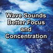 Wave Sounds Better Focus and Concentration de Calming Waves