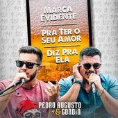 Marca Evidente / Pra Ter o Seu Amor / Diz pra Ela de Pedro Augusto