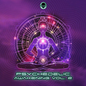 Psychedelic Awakening, Vol. 2 by Dr. Spook