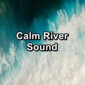 Calm River Sound de Sleep Waves