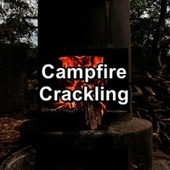 Campfire Crackling by Fireplace FX Studio