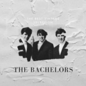 The Best Vintage Selection - The Bachelors by The Bachelors