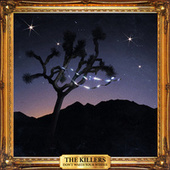 Don't Waste Your Wishes de The Killers