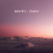 Steadfast by Joseph Metz