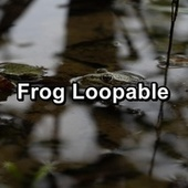 Frog Loopable von FX Makers