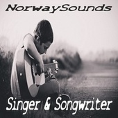 Singer & Songwrighter by Various Artists