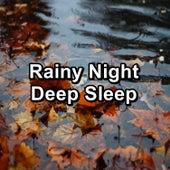 Rainy Night Deep Sleep de Rain Sound Studio