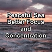 Peaceful Sea Better Focus and Concentration de Ocean Sounds Collection (1)