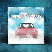 Driving Me Crazy by Rasta