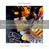 Merry are Christmas with Classics and Joyful Bird Songs by Calming Sounds