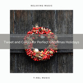 Tweet and Carols for Perfect Christmas Holidays by Calming Sounds