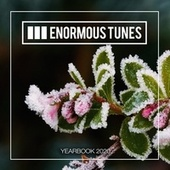 Enormous Tunes - The Yearbook 2020 von Various Artists