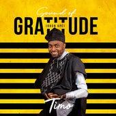 Sound of Gratitude (Ohun Ope) de Timo