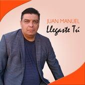 Llegaste Tú de Juan Manuel