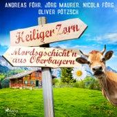 Heiliger Zorn - Mordsgschicht'n aus Oberbayern von Jörg Maurer