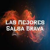 Las Mejores Salsa Brava by Adolescent's Orquesta, Alvaro Del Castillo, Bobby Valentin, Dimension Latina, Eddie Santiago, Frankie Negron, Gilberto Santa Rosa, grupo niche
