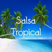 Salsa Tropical de El Gran Combo, Frankie Ruiz, Gilberto Santa Rosa, Giro López, grupo niche, La Sonora Ponceña, Orquesta Mulenze, Tommy Olivencia, Wayne Gorbea