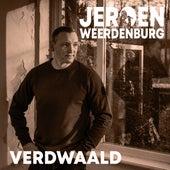 Verdwaald von Jeroen Weerdenburg