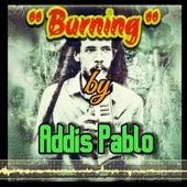 Burning by Addis Pablo