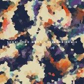 Too Much (Leisure Remix) by Tora