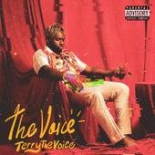 The Voice von TerryTheVoice