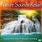Nature Sounds: Relax by Nature Sounds Relax