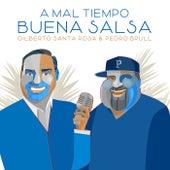 A Mal Tiempo Buena Salsa by Gilberto Santa Rosa