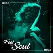 Feel The Soul 003 de Various Artists
