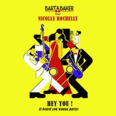 Hey You! (I Heard You Wanna Party) by Bart&Baker