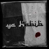 Ya Habibi von Loc 079