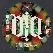 All Junglist EP by DJ Q