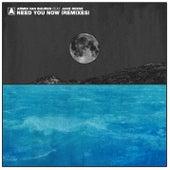 Need You Now (Remixes) by Armin Van Buuren