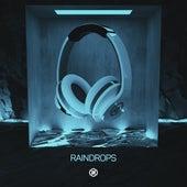 Raindrops (8D Audio) by 8D Tunes