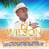 Le Best of du DJ producteur No. 1 Caribbean DJ Wilson (Anthologie Zouk 48 Hits) de Various Artists