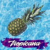 Tropicana by Il Laboratorio del Ritmo