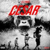 CESAR by Eli Fross