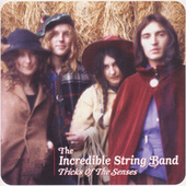 Tricks of the Senses by The Incredible String Band