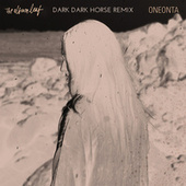 Oneonta (Dark Dark Horse Remix) de The Album Leaf