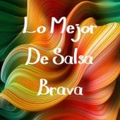 Lo Mejor de Salsa Brava de grupo niche, Hector Lavoe, Sonora Poncena, Tito Rojas, Vity Ruiz, Willie Colon, Willie Rosario