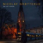 Der ute i mørket von Nicolay