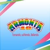 Tomando, Sufriendo, Bailando by Armonia 10
